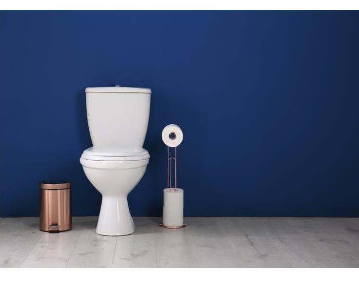 : A white toilet sitting next to a bronze trashcan against a blue wall.