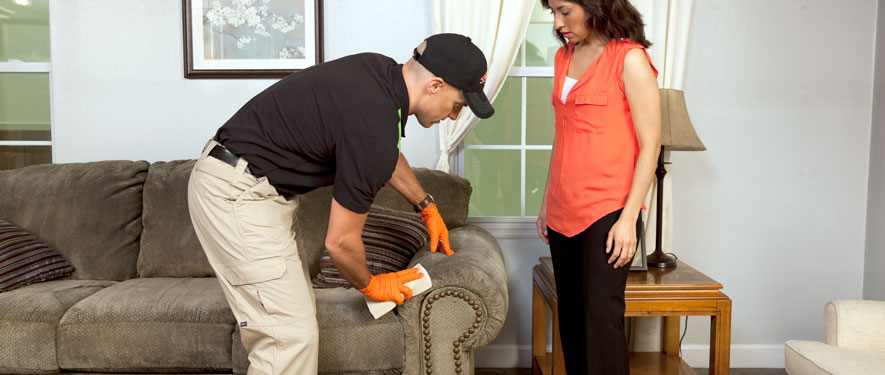 Hesperia, CA carpet upholstery cleaning