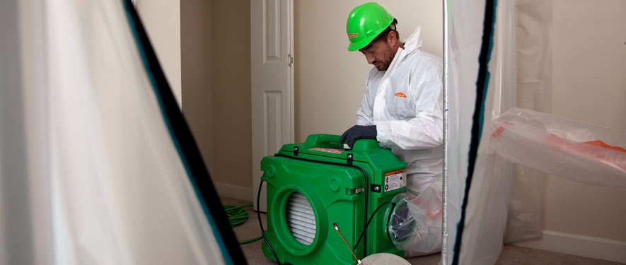Hesperia, CA mold cleanup